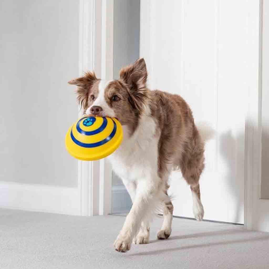 Игрушка  для собак dog toy sounder