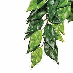 Растение шелковое Hagen Ficus большое (РТ3050)