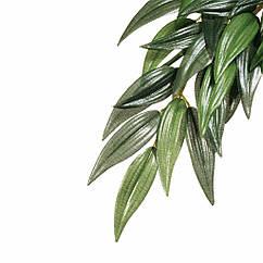 Декорация для террариума Hagen Exo Terra растение (шёлк)  Ficus (PT3051)