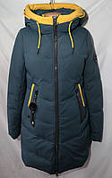 Куртка женская оптом холлофайбер норма YAS539