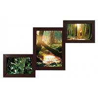 Деревянная мультирамка для фото 3 в 1 Руноко Лесенка-мини Венге