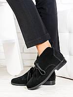 Замшевые женские ботильоны на шнуровке