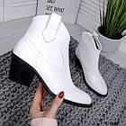 Женские демисезонные ботинки казаки белого цвета, натуральная кожа (в наличии и под заказ 7-16 дней), фото 6