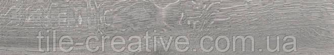 Керамічний граніт Арсеналі сірий обрізний 20х119,5х11 SG516000R
