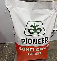 Семена Подсолнечника Пионер П64ЛЕ25 (P64LE25) під Гранстар (стійкий до 5+рас вовчка)