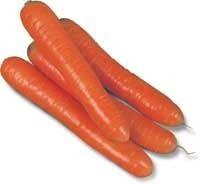 Семена моркови КОЛТАН F1 (1,6-1,8) 100000 семян Nunhems