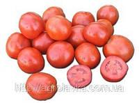 Насіння томату ВУЛКАН F1 25 000 насінин Nunhems