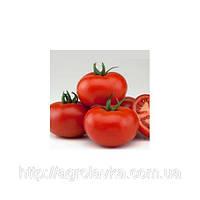 Семена Томата ВАЛДАЙ (4195) F1  500 семян Nunhems