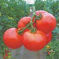 Семена Томата АКСАЙ (4196) F1  500 семян Nunhems