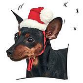 Новогодний колпак для собаки Pet Fashion M (26-30 см, 5-7,5 кг)
