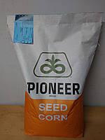 Семена Кукурузы Пионер П9175 AQUAmax ФАО330