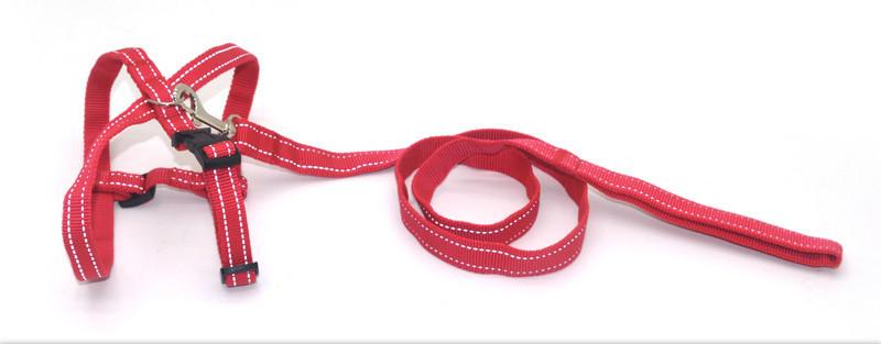 Комплект для собак и котов капроновый светоотражающий Неон 2,0 красный