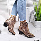 Женские зимние ботинки казаки бежевого цвета, натуральная кожа (под заказ 7-16 дней), фото 7