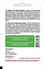 Буряк Циліндра, 5 г. СЦ, фото 2