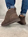 Мужские зимние ботинки UGG Brown (коричневые), фото 6