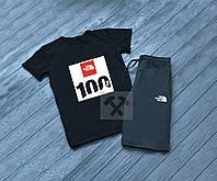 Мужской комплект футболка + шорты в стиле THE NORTH FACE черного и серого цвета