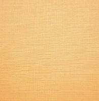 Рулонные жалюзи закрытого типа, Len 0852, оранжевые.