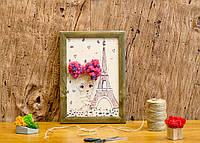 Картина по номерам со мхом Париж 290Х210 мм, фото 1
