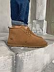 Мужские зимние ботинки UGG Brown (коричневые), фото 4