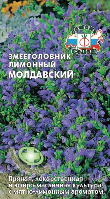 Змееголовник лимонный Молдавский 0,5 г (Седек)