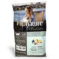Сухой корм Pronature Holistic Adult Atlantic Salmon&Brown Rice для котов всех пород 5.44 кг
