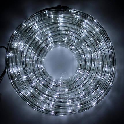 Декор Гирлянда Светодиодный Прозрачный Шланг Шнур Дюралайт ЛЕД Белый Холод 20м От 220В С Адаптером 8 Режимов, фото 2