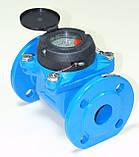 Лічильник холодної води турбінний фланцевий Ду80 Powogaz MWN-50-80, фото 2