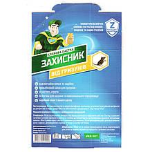 """Клеевая ловушка """"Защитник"""" от грызунов (крыс, мышей), 13*20 см, от Ukravit, Украина"""