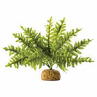 Декорація для тераріуму Hagen Exo Terra Boston Fern рослина на підставці (PT2990)