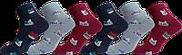 Носки женские демисезонные хлопок Житомир ТМ LOMANI размер 23-25 (36-40) микс