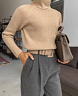 Женский однотонный тонкий свитер с горлом и рукавом регланом 77dmde757