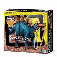 """Набір для творчості 4M ДНК динозавра """"Стегозавр"""" (00-07004)"""