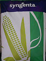 Семена Кукурузы Сингента Респект ФАО240