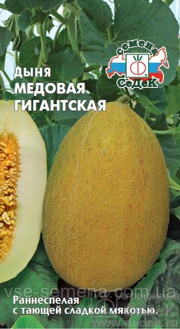 Дыня Медовая Гигантская 0,5 г (Седек)