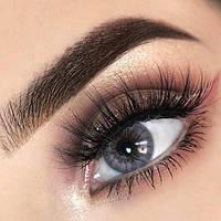 Цветные контактные линзы Freshlook Colorblends серый без диоптрий, фото 1