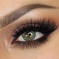 Цветные контактные линзы Freshlook Colorblends зеленые без диоптрий, фото 1