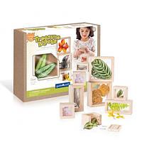 Набор блоков Guidecraft Natural Play Сокровища в ящиках, прозрачный (G3084)
