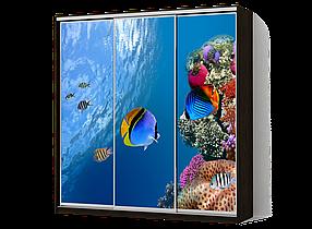 Шкаф-Купе Трехдверный Классик-3 Фотопечать M087/ ДСП Венге, 2100х450х2000 (Luxe-Studio TM)