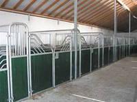Денники для лошадей ВАЛХАЛА