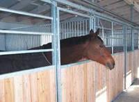 Денники для лошадей PROFIT