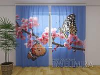 ФотоТюль Две бабочки