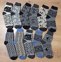 Носки шерстяные мужские MIX
