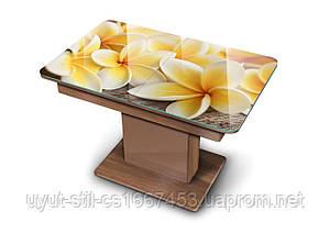 Раскладной кухонный стол Boston T