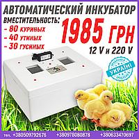 Инкубатор для дома на 12 В и 220 В, фото 1