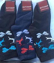 Шкарпетки жіночі теплі махра Житомир р. 35-41(оленята)