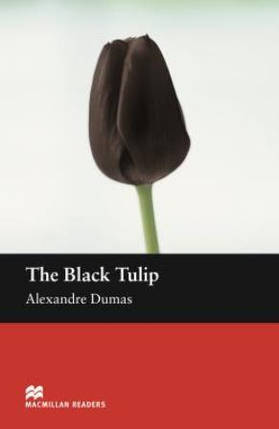 The Black Tulip, фото 2