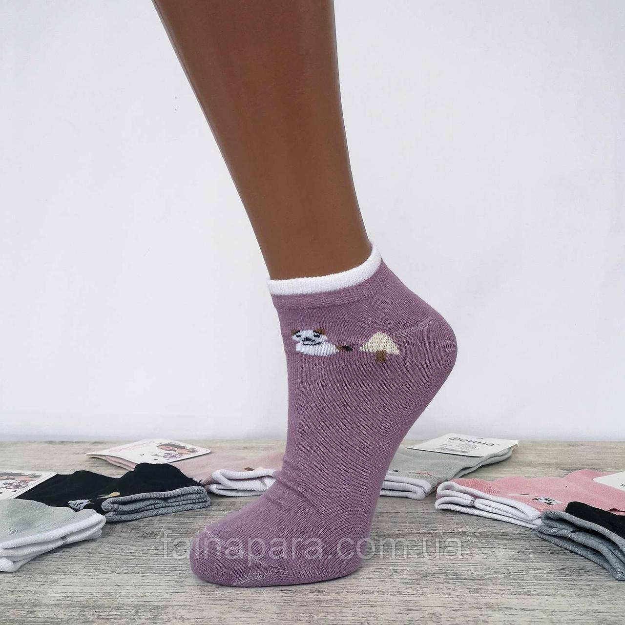 Шкарпетки жіночі однотонні короткі Фенна