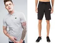 Мужской комплект поло + шорты в стиле LAcoste серого и черного цвета