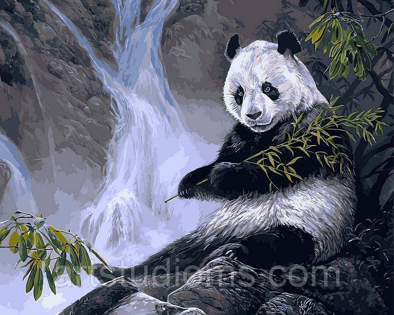 Картина по номерам Панда с бамбуком 40 х 50 см (с коробкой)