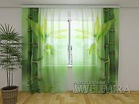 ФотоТюль Зеленый бамбук